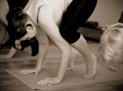 yoga.add-life.ru16.20120521