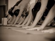 yoga.add-life.ru28.20120521